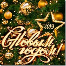 pozdravleniya-s-novym-godom-2019-kollegam-7